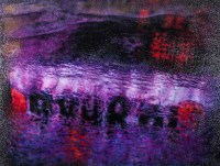 Michael Scheirl | Purple Rain